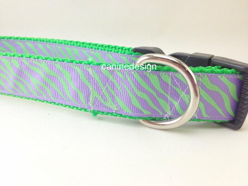 Dog Collar Purple Green Zebra 1 inch wide adjustable quick image 0