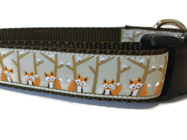 Dog Collar Birch Fox 1 inch wide adjustable quick release image 0