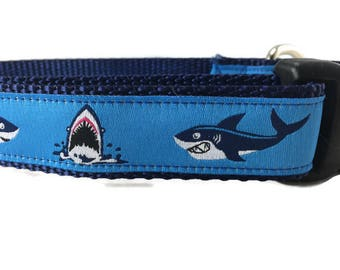 Dog Collar, Sharks, 1 inch wide, adjustable, quick release, plastic buckle, metal buckle, chain, martingale, hybrid, nylon