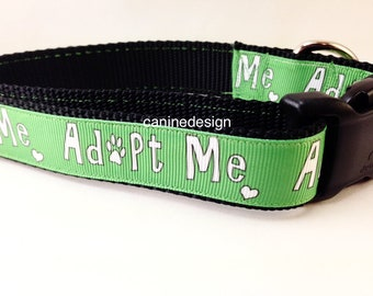 Dog Collar, Adopt Me, 1 inch wide, adjustable, quick release, medium, 13-19 inches