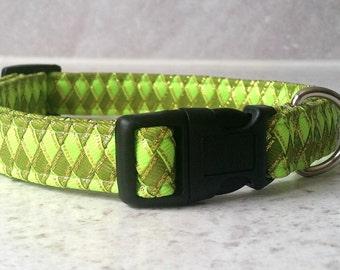 Unusual Green Dog Collar in a Braided Ribbon Style