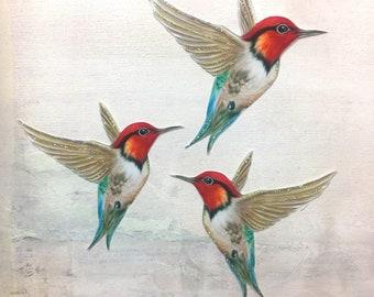 Hummingbird Embellishments Ginger