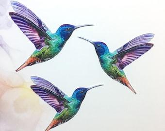 Hummingbird Embellishments Skittles
