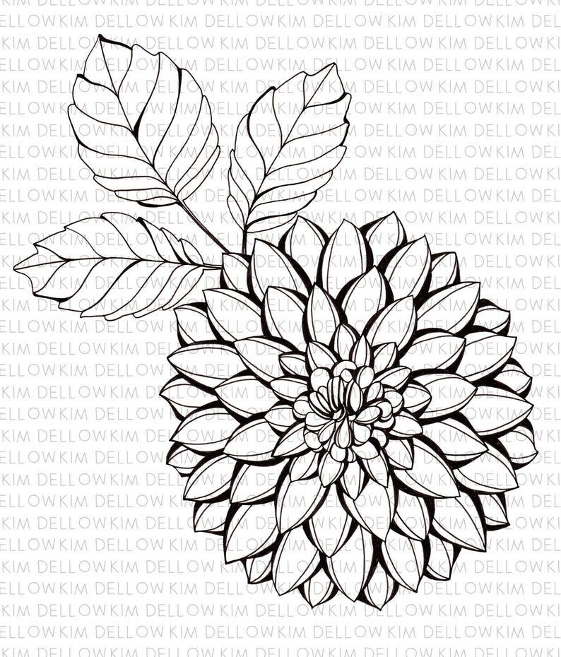 Digital Stamp  Dahlia Flower and Leaves Digi Stamp for art image 0