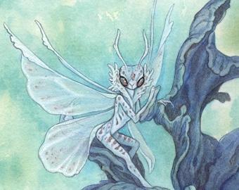 "5""x7"" Art Print ""Pale Mantis"" Faerie"