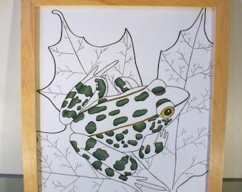 Framed Original Frog Drawing