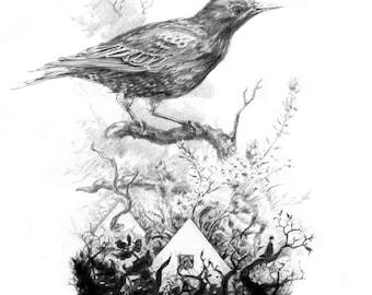 Starling - Original A5 art print