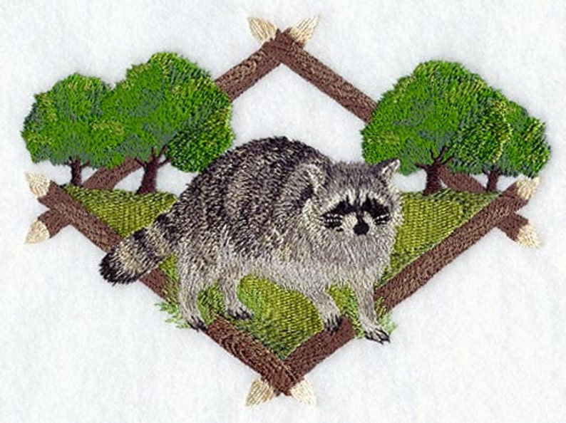RACCOON EMBROIDERY on Tee or Sweat by Rosemary image 0