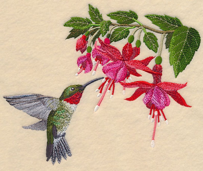 HUMMINGBIRD and FLOWERS EMBROIDERY on Ladies' Tee or image 0