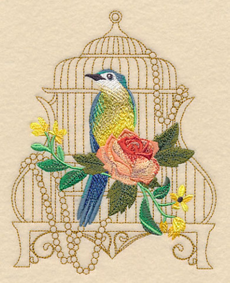 VICTORIAN BIRDCAGE on Ladies' Sweat by Rosemary image 0