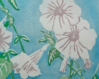 In Napa: wall art and home decor, nature garden flower, a hand pulled limited edition etching in color. Turquoise.
