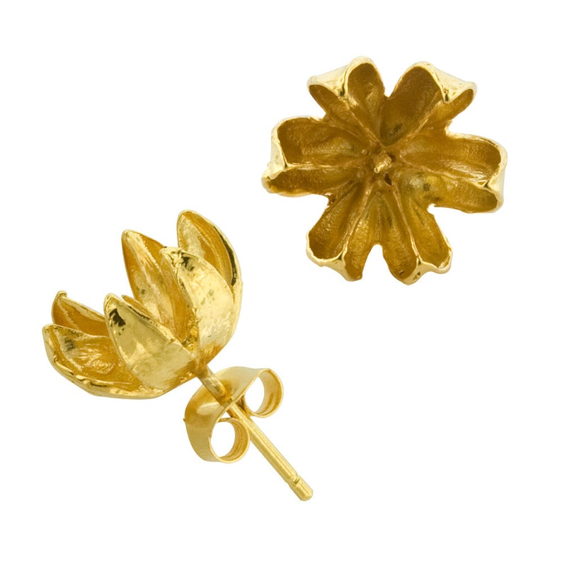 Large Gold Seed Stud Earrings image 0