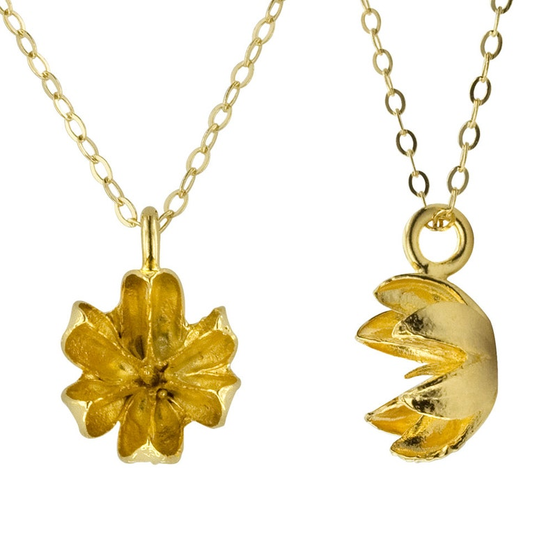 Gold Seed Pod Necklace // Delicate Little Pendant Necklace image 0