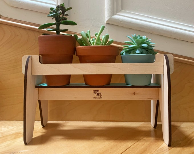 BEVERLY wood plant shelf, wooden plant holder, plant stand, small plants, herbs, succulents, cactus, indoor plants, house plant