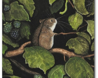 Oh a Tangled Web we Weave - Hamster Blackberries Home Decor Art Prints by Bihrle cc31