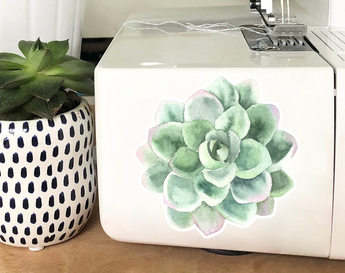 Vinyl Sticker - Pale Green Succulent