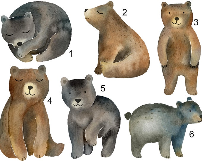 Bears - Sew & Stuff Plushies