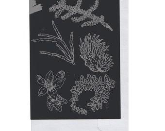 Grey on Black Plant Pieces Card