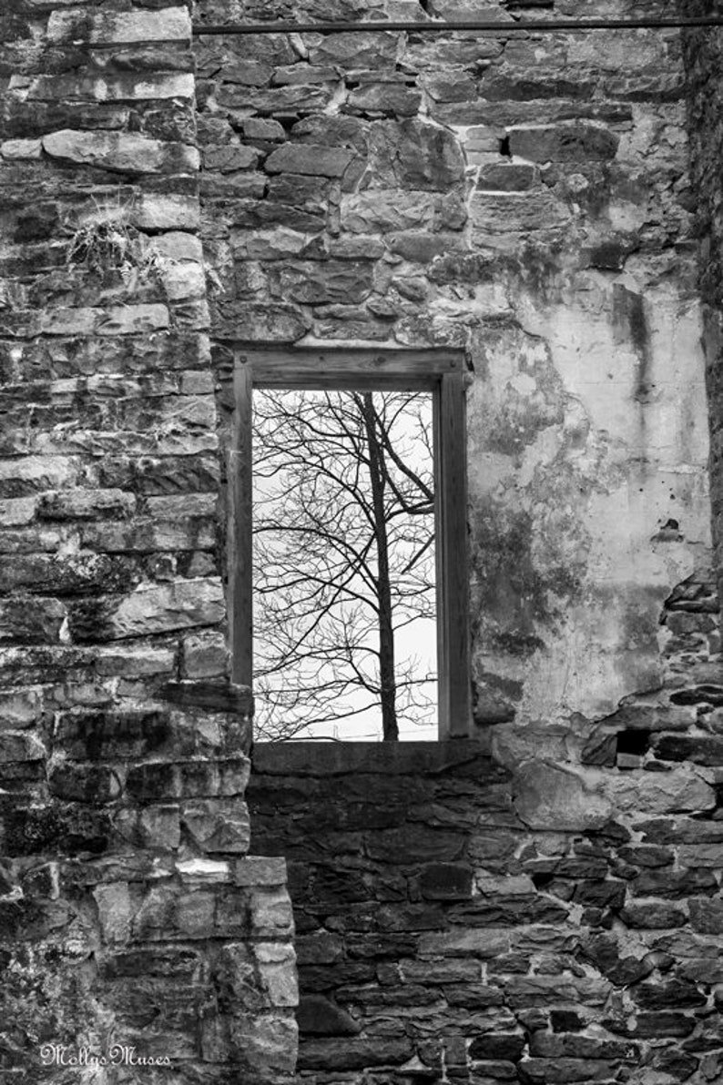 Surreal black and white photography tree in window art print old stone building pennsylvania historic vertical industrial decor