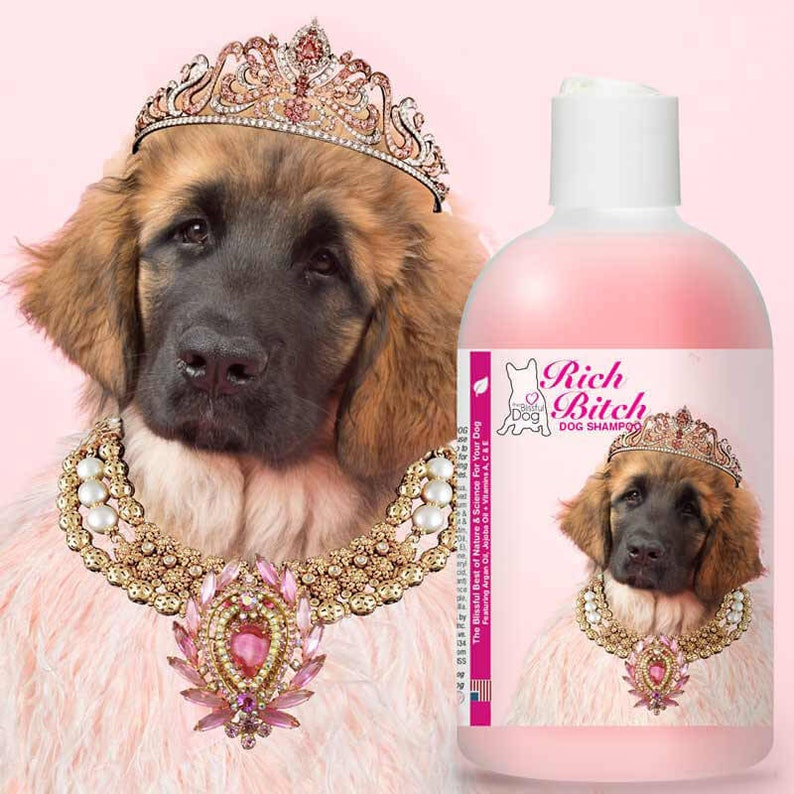 Rich Bitch Leonberger Dog Shampoo or G-Rated Drama Queen Dog Shampoo for  Your Royal Dog Available in 4 oz & 8 oz Bottles Your Choice Labels