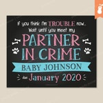 PRINTABLE | Partner in Crime Pregnancy Reveal Announcement Sign Poster Chalkboard Baby Footprints Pet Paw Print Bones | 8x10 11x14 | Custom