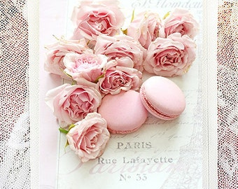 Paris Note Cards, Pink Macarons & Roses Note Card, Flower Greeting Cards, Shabby Chic Note Cards, Paris Roses Greeting Cards, Paris Macarons