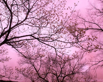 Nature Photography, Dreamy Pink Surreal Nature Photo, Baby Girl Nursery Decor Nature Print, Pink Woodlands Trees, Pink Fairytale Nature Art
