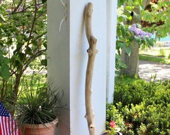 "Thick Knobby 30 1/2"" Driftwood Branch for Hanging , Garden Art , Beach Decorating"