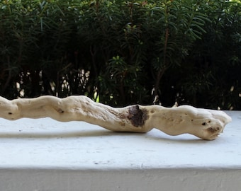 "Thick Wavy 15"" Driftwood Piece for Bohemian Decor , Beach Decoration and Natural Art Supply"