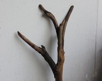 "Driftwood for Terrarium and Jewelry Photo Prop 7 1/4"" , Drift Wood Sculpture , Natural Craft Supply"