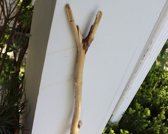 "Driftwood Branch 26"" With Etching and a 'Y' end , Drift Wood Photo Prop , Boho Decorating , Beach Art"