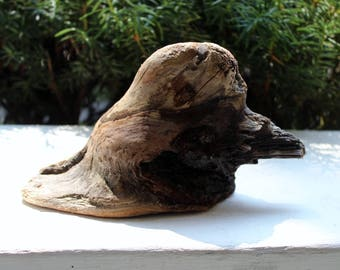 Natural Duck Driftwood Sculpture, surf tumbled One of a Kind Home Decor , Garden Decoration , Drift wood Art