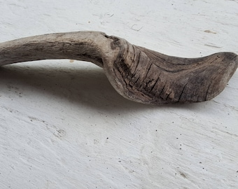 Curved Textured Driftwood Piece ,  coastal Accent , Drift wood Decor , naurical art