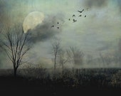 "Surreal landscape photography tree full moon woods birds gothic dark grey black  - ""Night flight"" 8 x 10"
