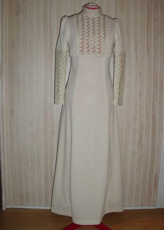 Vintage Formal Dress - image 1