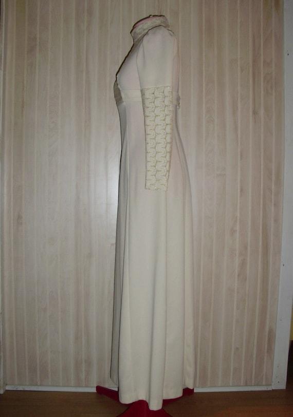Vintage Formal Dress - image 3