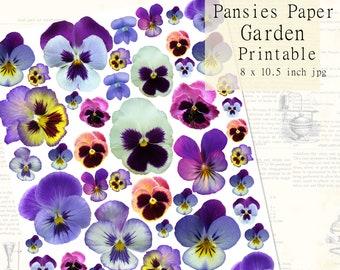 Paperhouse 3D Pansies