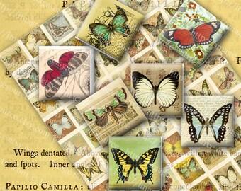 Butterflies on Ephemera, Square Inchies, Digital Collage Sheet, Scrabble Tile Pendant Images, Printable Download