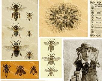 Digital Collage Sheet Bees and Beekeeping Images, Vintage Illustrations Printable Download