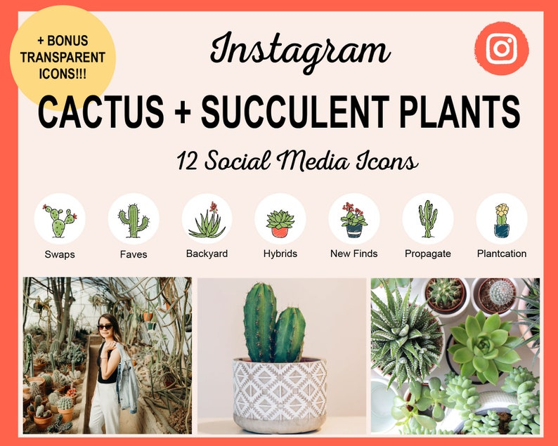 12 Cactus  Succulent Instagram Story Highlight Covers  Ready image 0