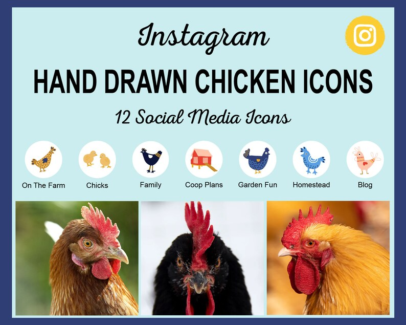 12 Hand Drawn Chicken Instagram Story Highlight Cover Icons  image 0