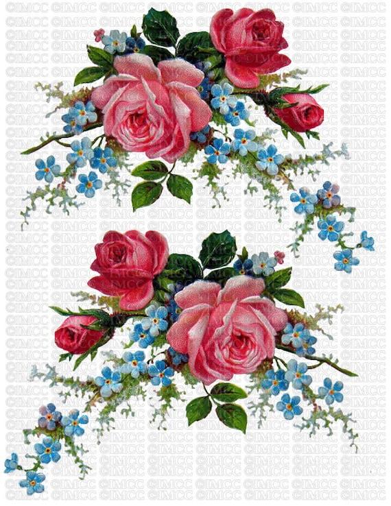 Impresión Png Casa Rosas Olvide Era Instantánea Transparente Me Azul Ecs Nots Digital Fondo Descarga Flores U Vintage Floral Repollo wZTiuOPXk