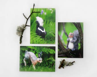 Cards & Prints