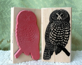 Spotted Owl rubber stamp from oldislandstamps