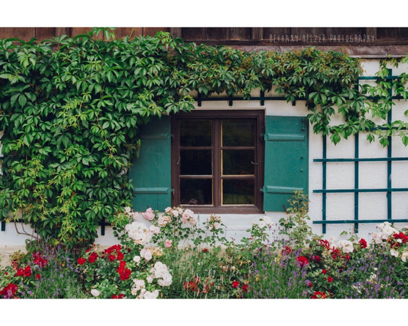 The Charming Garden 8x12 Print Flower Photography image 0