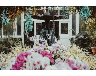 Garden Conservatory Photography, Orchid Photography, Dreamy Garden Art, New York Garden, Floral Decor, Flower Photography, Large Wall Art