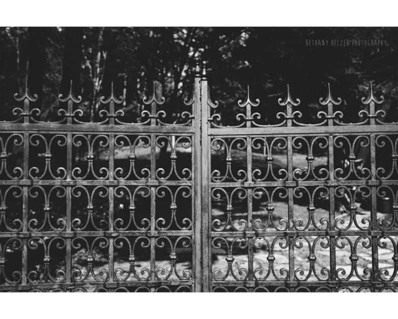 Black and White Photography Cranbrook House Bloomfield Hills image 0