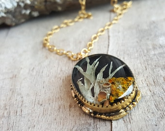 Real Lichen Necklace - Nature Jewelry - Botanical Jewelry - Woodland Necklace - Gold Oval Lichen Necklace