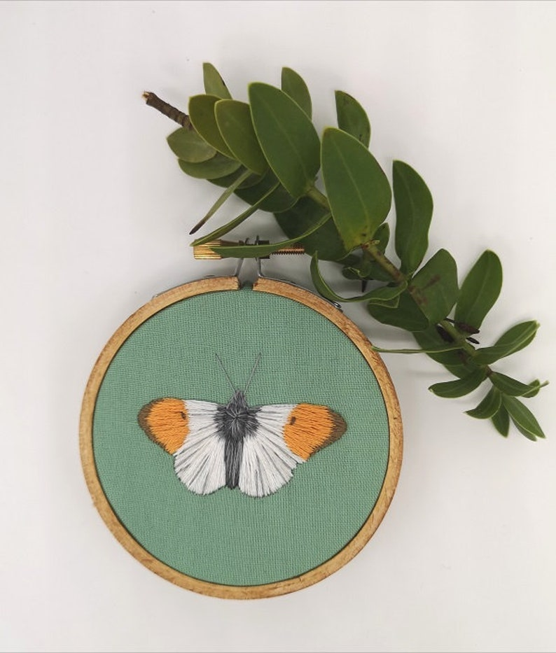 Hand Embroidered Hoop  3 inch hoop  Orange tip butterfly image 0