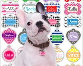 Personalized Pet Tag Personalized Dog Tag Custom Dog Tag Custom Pet Tag Double-Sided Dog Tags for Dogs Two-sided Dog Tag Pet ID Tag